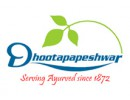 Shree Dhootapapeshwar Limited